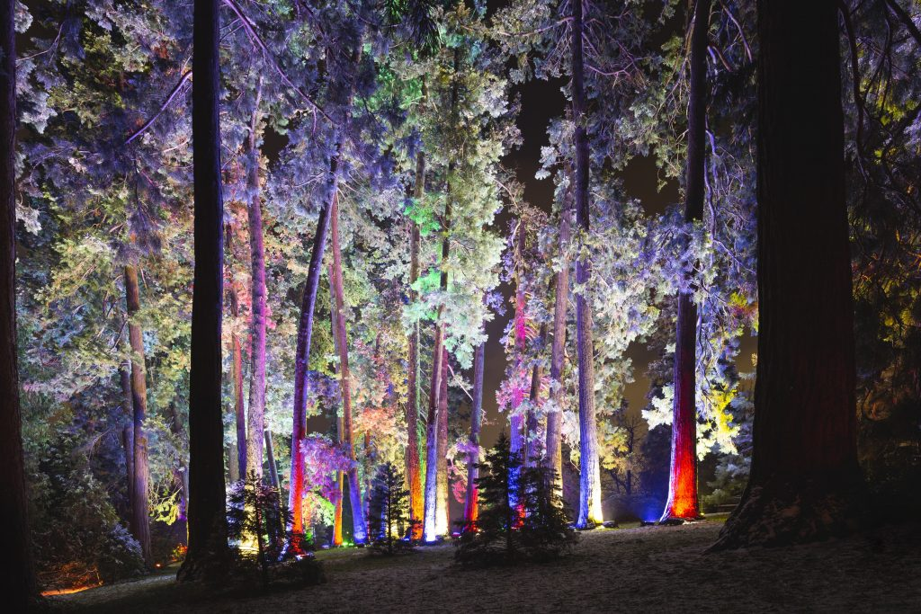 Las Luces del Real Jardín Botánico ©Christmas Garden Deutschland