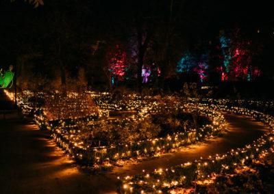 Las Luces des Real Jardín Botánico 2019
